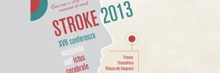 STROKE 2013